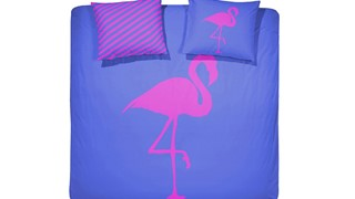 dbo_flamingo_electric_blue_topshot