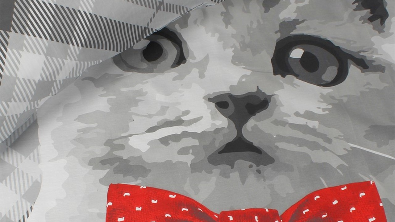 dbo_ambianzz_cat_with_bowtie_detail